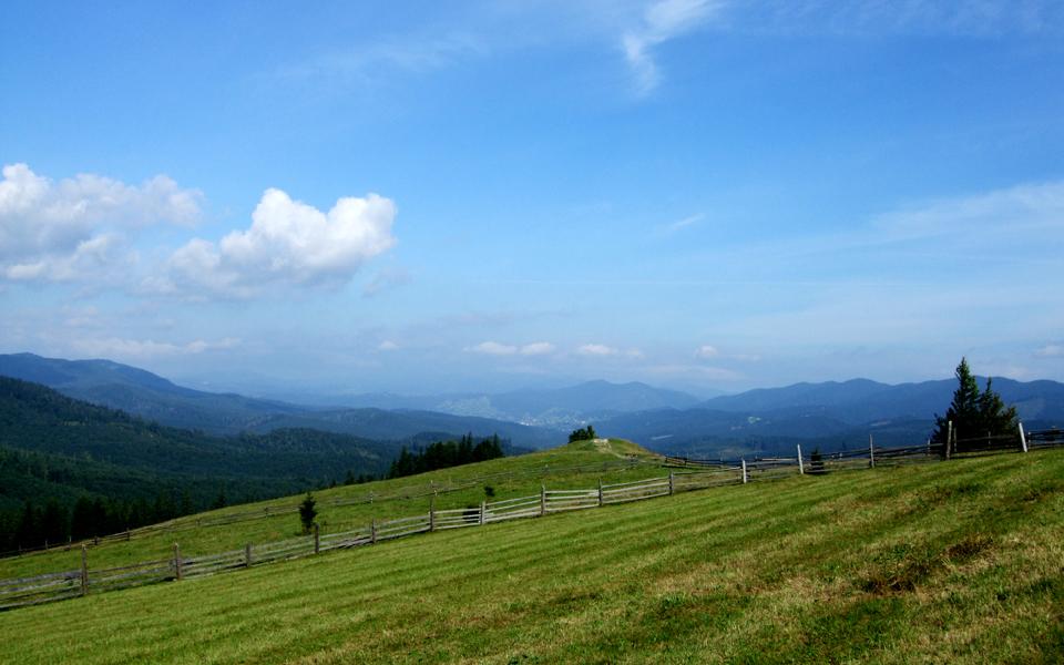 Краєвид з гори Буков'єн