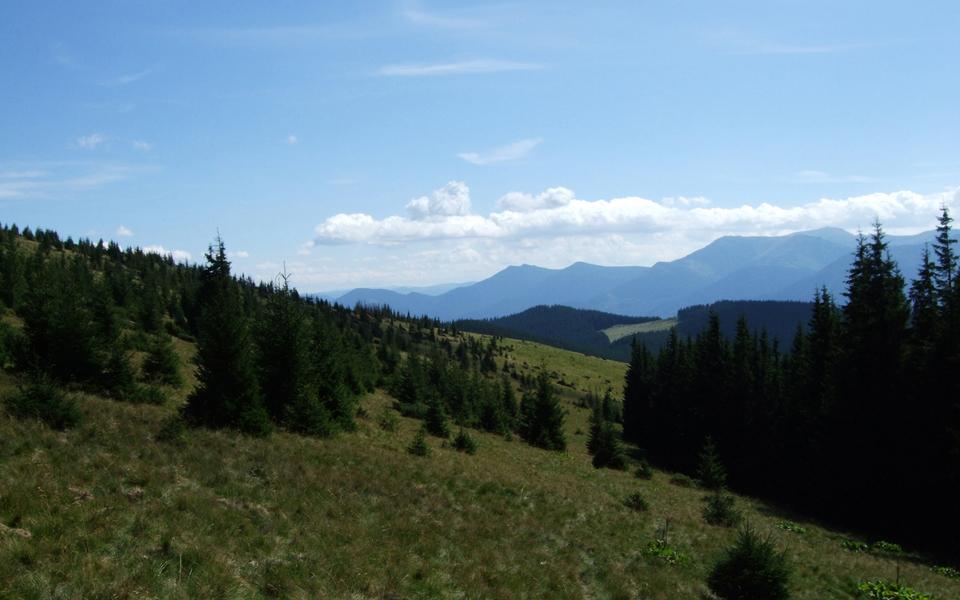 Краєвид з хребта Кострича