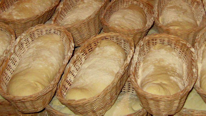Щоденний хліб, Івано-Франківщина