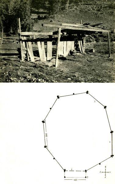 Іл.93. СТРУНКА та схема окола