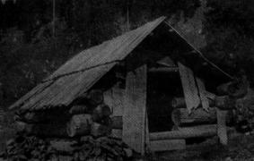 Іл.61. СВИНИНЕЦЬ (куча). Полонина Велика Гропа