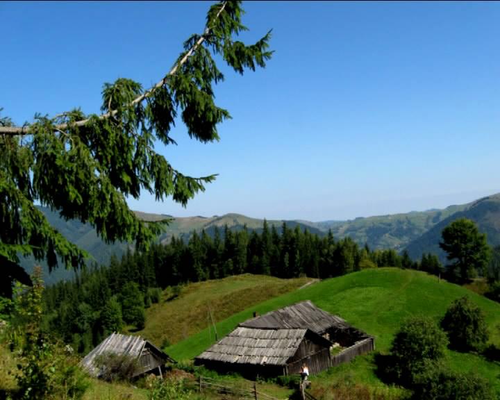 Гора Довбушєнка біля Криворівні